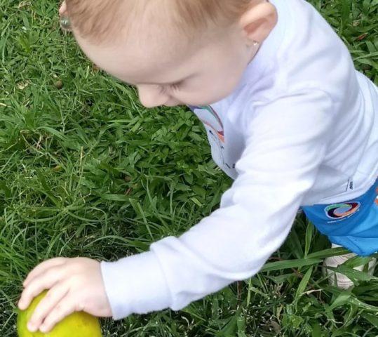 Como despertar nas crianças o interesse pela natureza